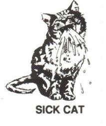 Cat sick